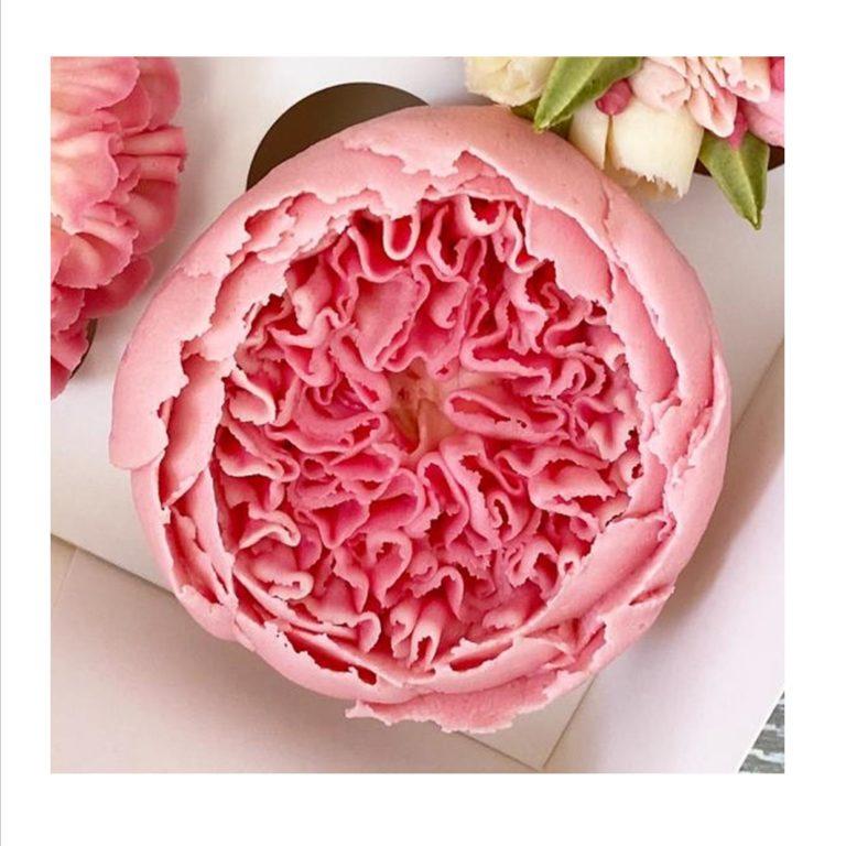 English Rose (David Austin) Cupcake