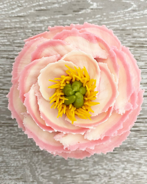 Buttercream open peony cupcake